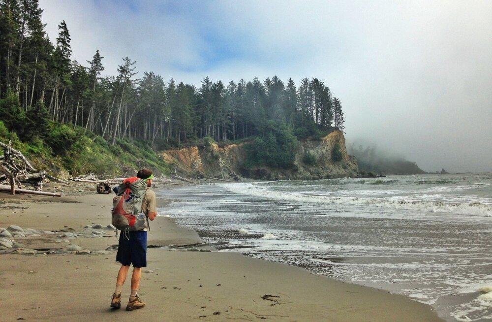 Ameerika serva all võib peituda taassünd: teadlased leidsid veel ühe iidse tektoonilise laama