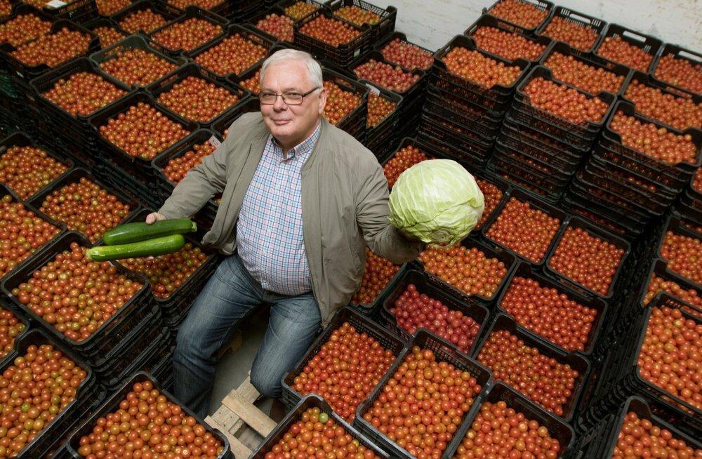 """""""Üha rohkem kasvatame kirsstomateid, sest neid ostetakse päris hästi,"""" rõõmustab Kalle Reiter oma saagi keskel."""