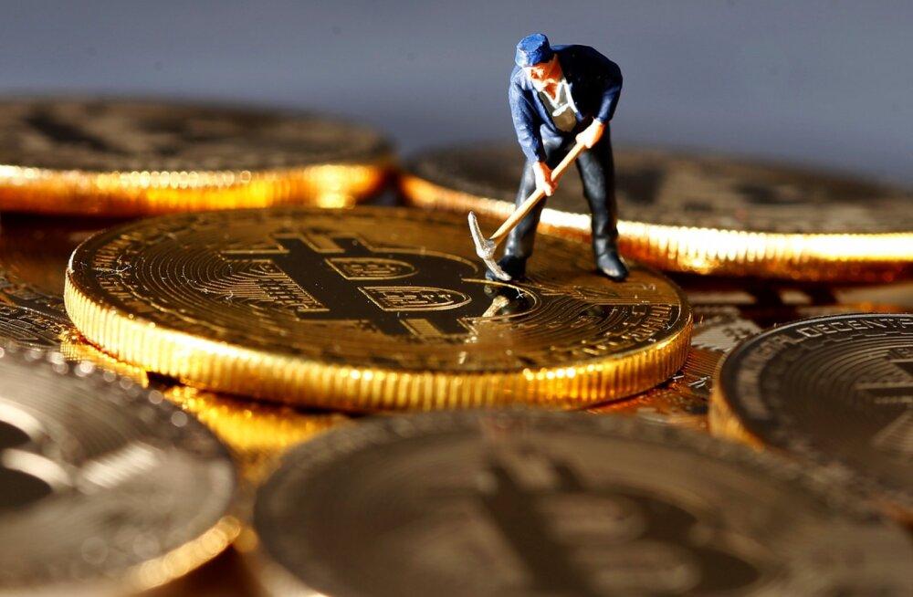 See polegi ulme. Kas tahate saada palka bitcoinides?
