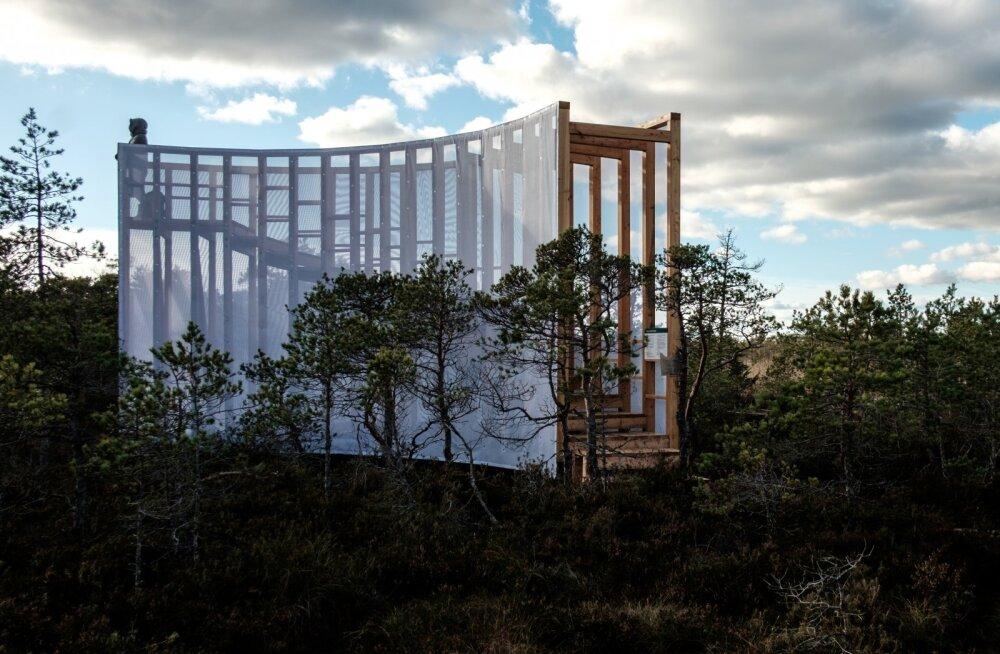 GALERII | EKA tudengid ehitasid Tuhu soo kohale unikaalse trepp-vaatetorni