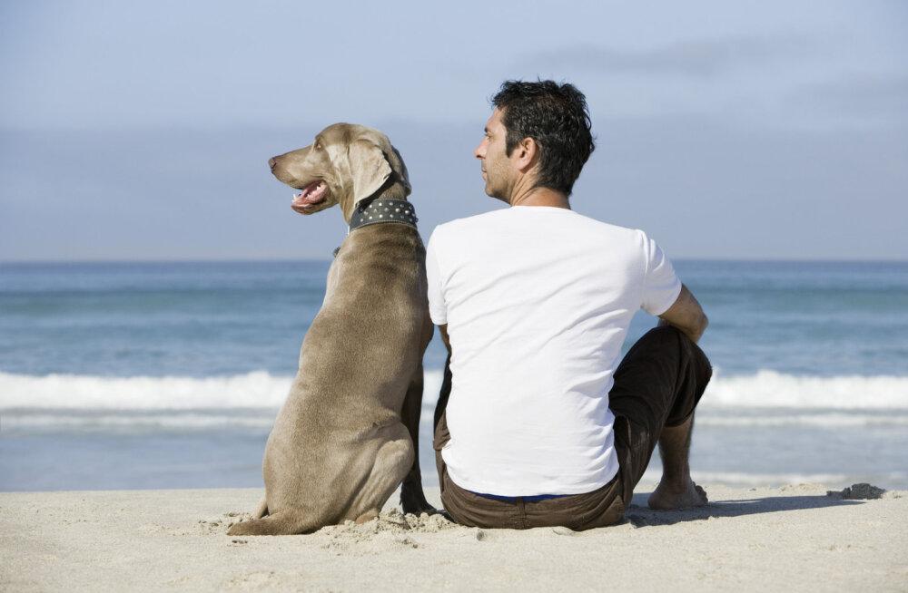 Täna on loomakaitsepäev | Eksperdid kinnitavad, et inimesed ei ole loomadest targemad, vaid lihtsalt erinevad