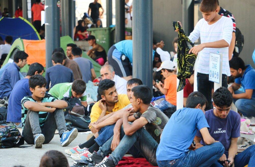 BBC karm järeldus: pagulased on Baltimaades lõksus ja masenduses, tahetakse kolida rikastesse Euroopa riikidesse