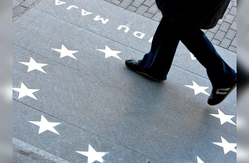 Евросоюз запретит в новом году продажу перечной мяты