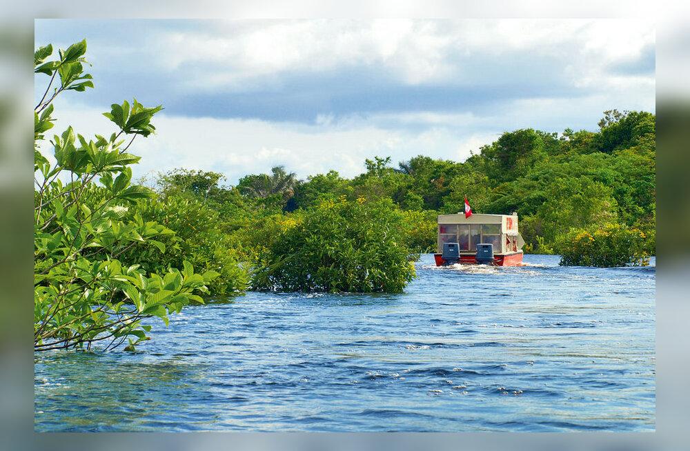 Amazonase ja vihmametsa lummuses
