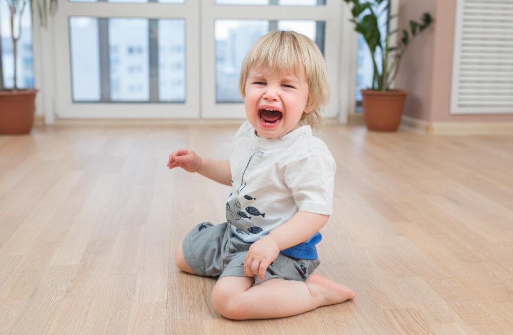 Lapsevanem: taltsutamatud jõnglased rikuvad laste jõulupeod! Pange oma väiksed õed-vennad ketti, kui nad paigal püsida ei suuda!