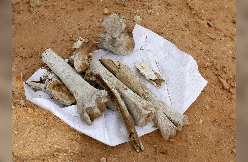 Tripoli massihauast leiti väidetavalt 1270 inimese jäänused