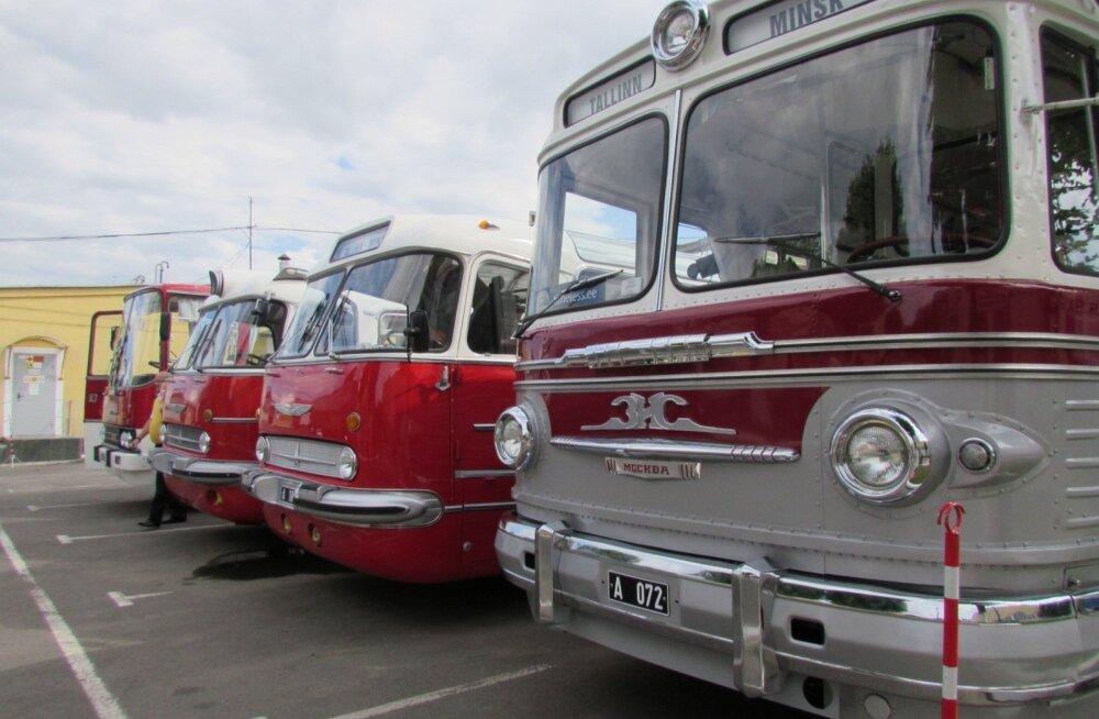 ФОТО: Ретро-автобусы из Эстонии ударили пробегом по белорусскому небездорожью