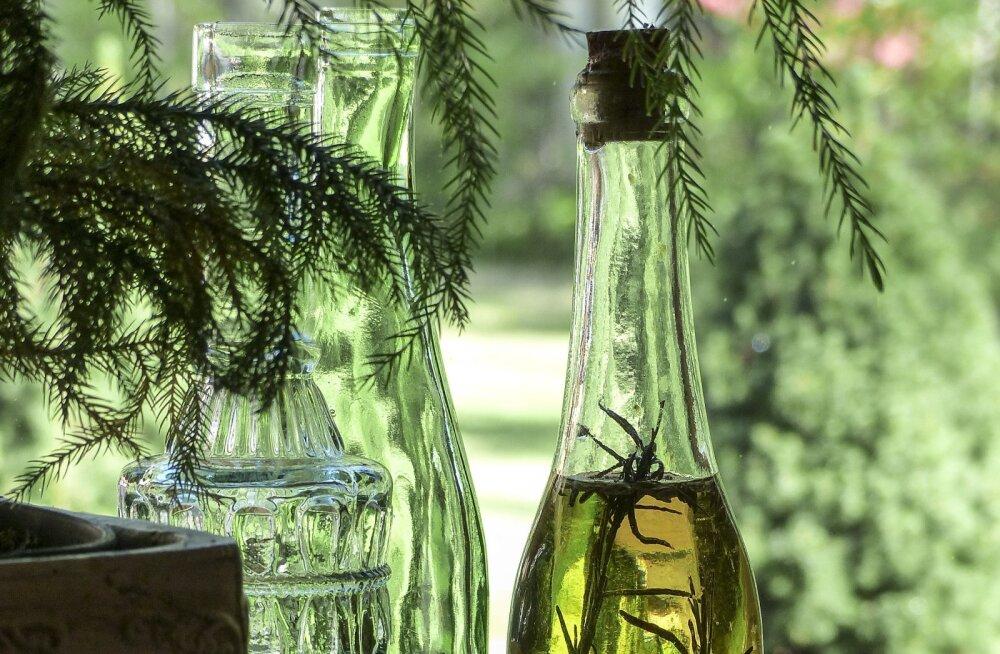 Tee oma tervisele pai — mitu põhjust, miks peaksid jooma hommikuti supilusikatäie oliiviõli
