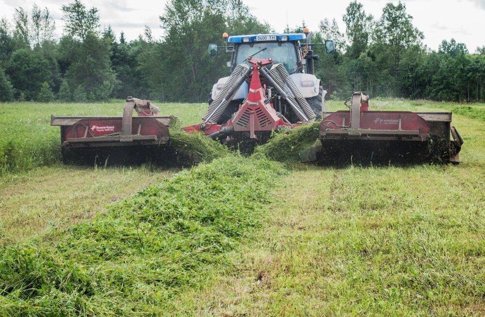 Kõigepealt tuleb rohi niita. Hea niiduk ka muljub rohu.