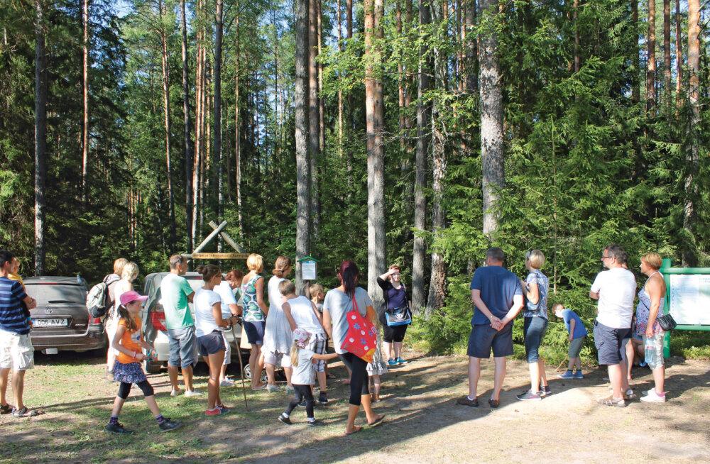 Traditsiooniline kohtumispaik Põlvas — ökofestival