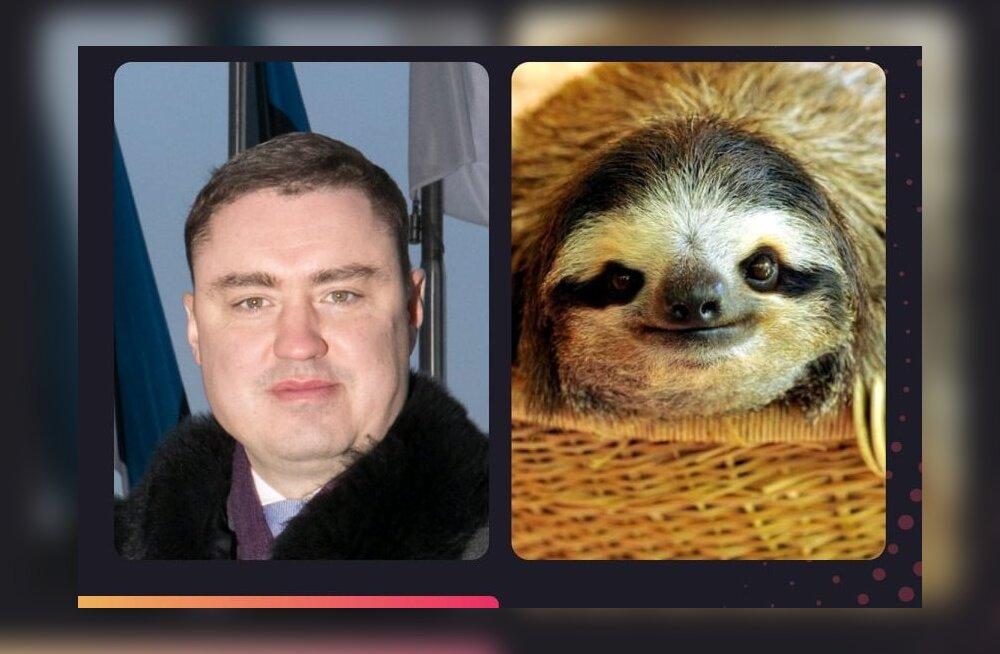 ФОТО-ПРИКОЛ! Delfi узнал, на каких животных похожи эстонские знаменитости
