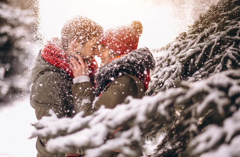 Tahad viia kallima lumisesse metsa kohtingule? On paar olulist asja, mida sa võiksid meeles pidada