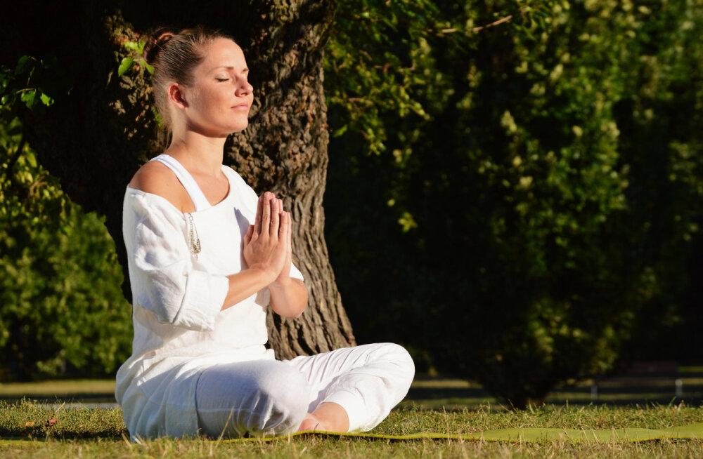 Meelerahu meister Thich Nhat Hanh: esimene samm tunnetega tegelemisel on teadvustada oma emotsioone