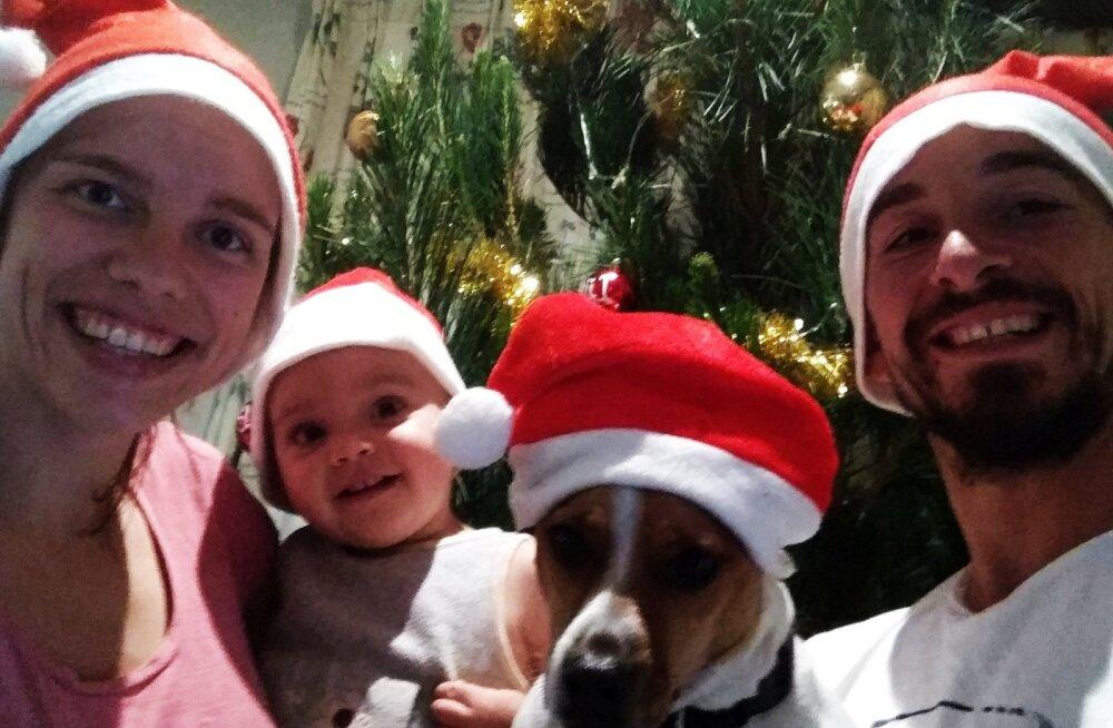 Eestlanna jõulud Lõuna-Aafrikas: mis tunne on jõule pidada 40kraadises kuumuses ja ehitud männipuude all?