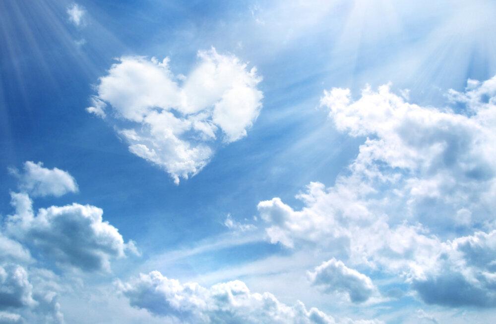 Alkeemia lugemisnurk | Vajame õnnelikuks eluks armastust, nagu vajame hapnikku, et elus püsida