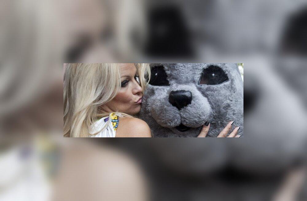 FOTOD: Pamela Anderson võitleb hülgepüügi vastu