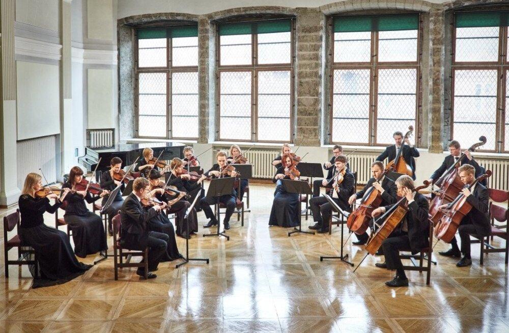26 сезон Таллиннского камерного оркестра начнется праздником улицы Пикк
