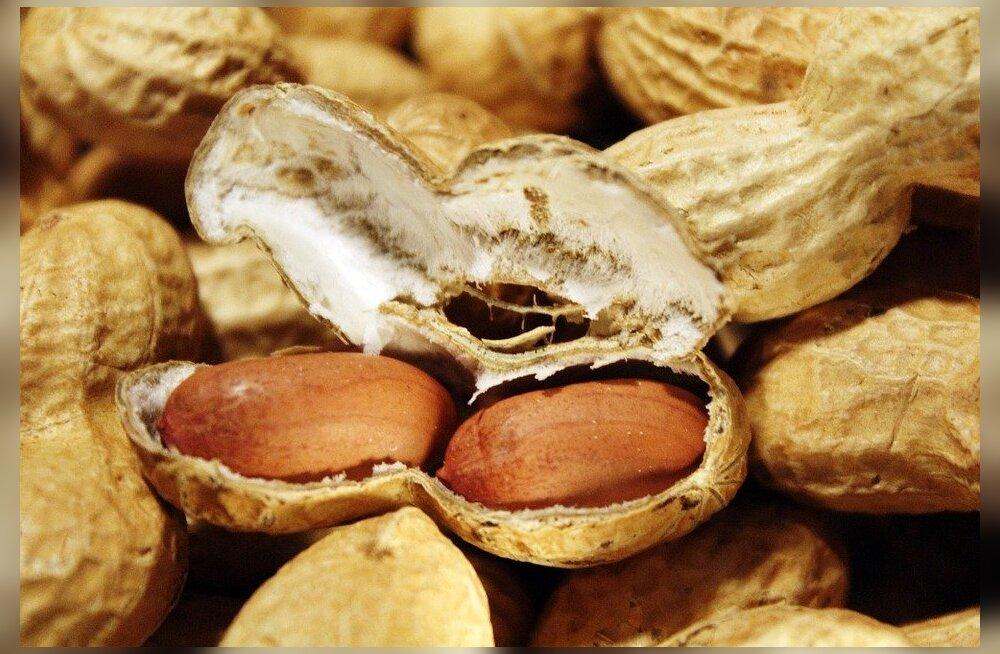 Ameeriklased söövad aastas peaaegu kolm kilo maapähkleid