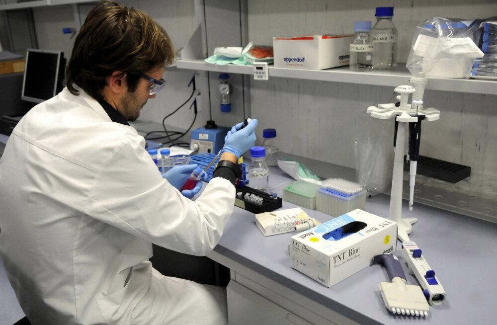 Kuidas edeneb koroonavaktsiini loomine? Üllatavalt hästi