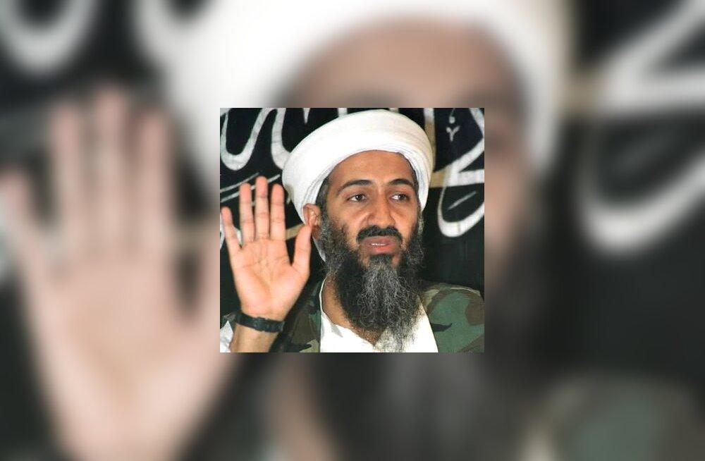 Osama bin Laden, al Qaeda liider