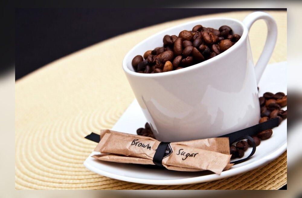 b0f37f66901 Kohvimeister õpetab, kuidas valmistada head presskannukohvi - Maaleht