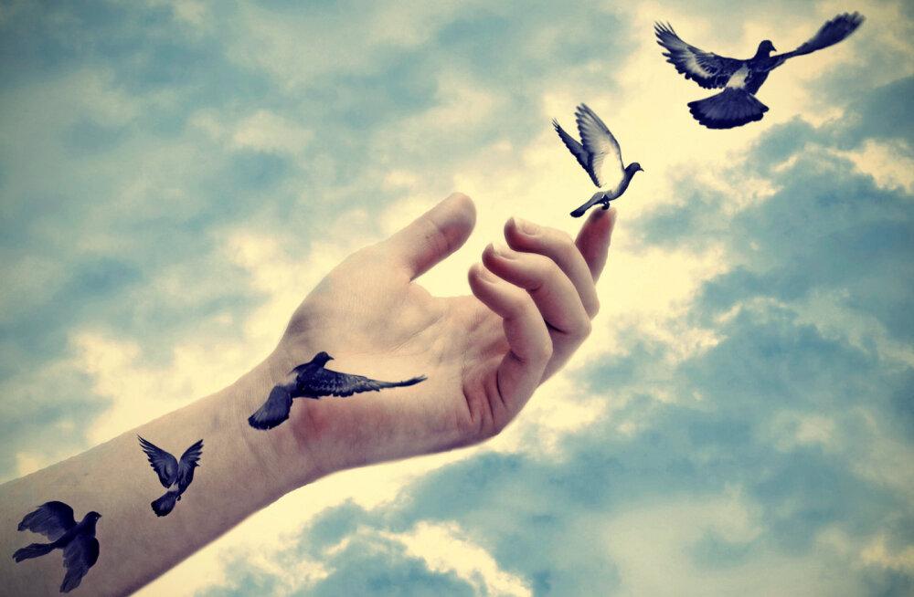 Praegu on hea aeg vabaks lasta hirmud ja valud, mis sind takistavad elamast täiel rinnal