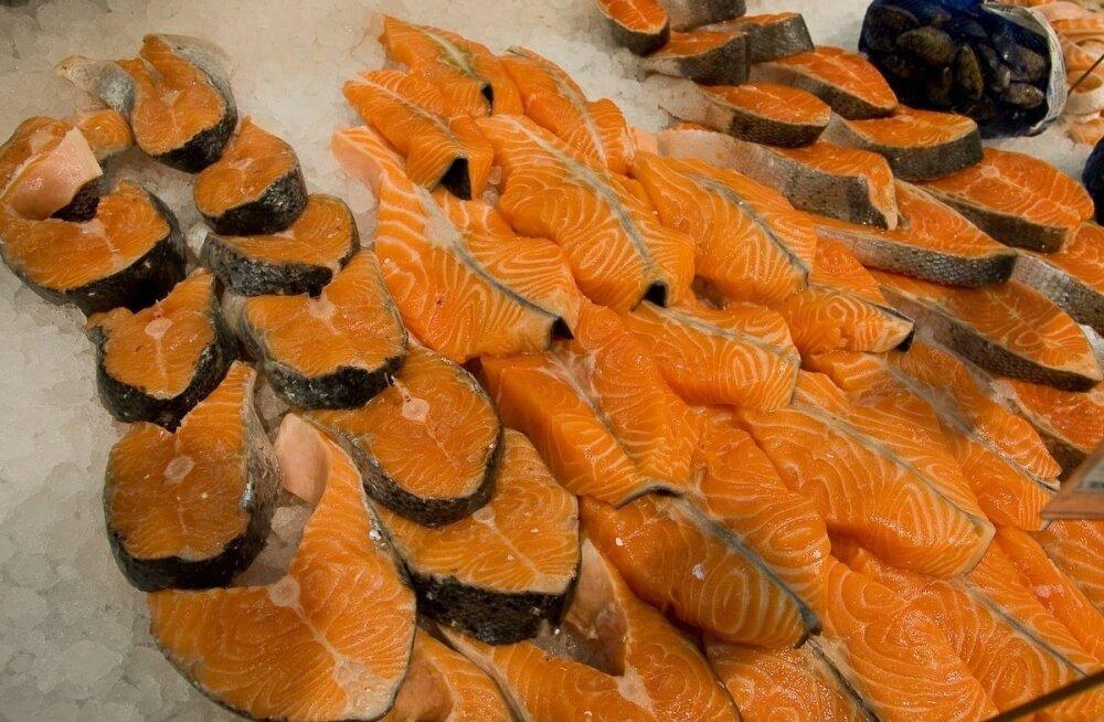 Эстонские власти предупреждают: некоторые виды балтийской рыбы безопасны для питания лишь в количестве одного кусочка в неделю
