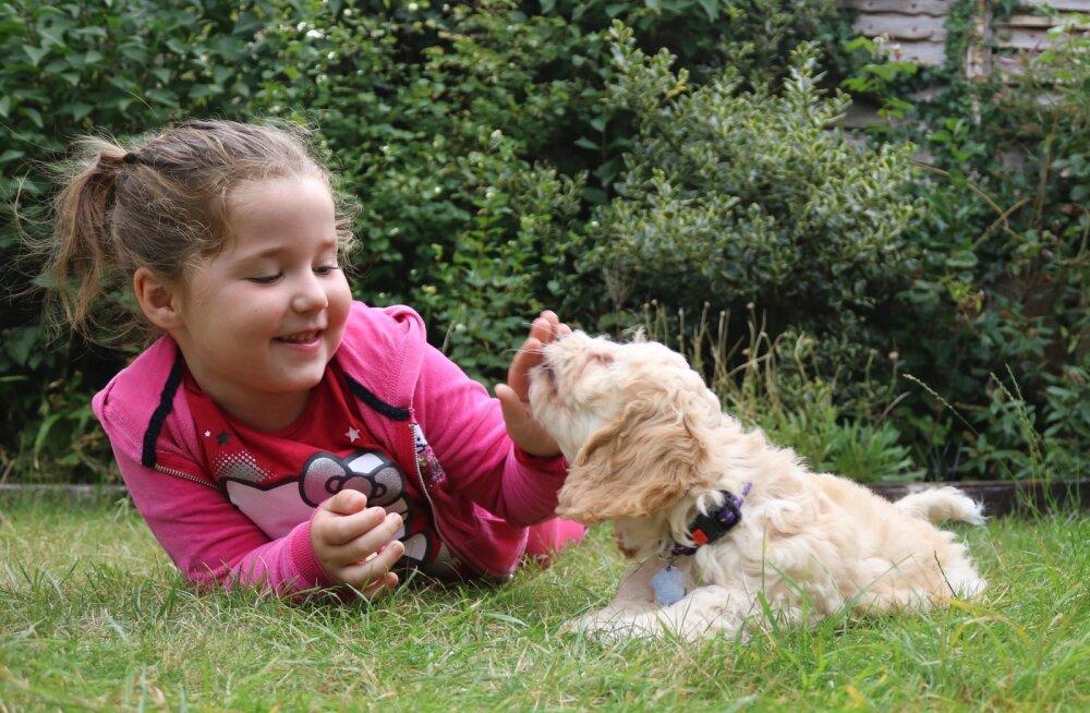 7 vahvat trikki, mida laps koerale õpetada saab