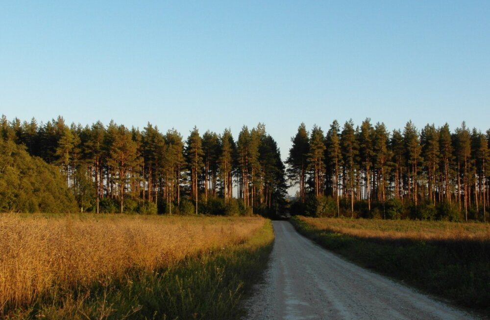 Sügis Kesk-Eestis