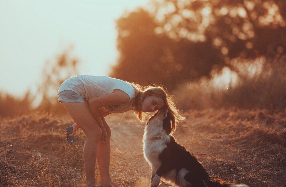 Mõista oma lemmikut: mida ütleb sinu lemmiklooma tähemärk tema iseloomu kohta?