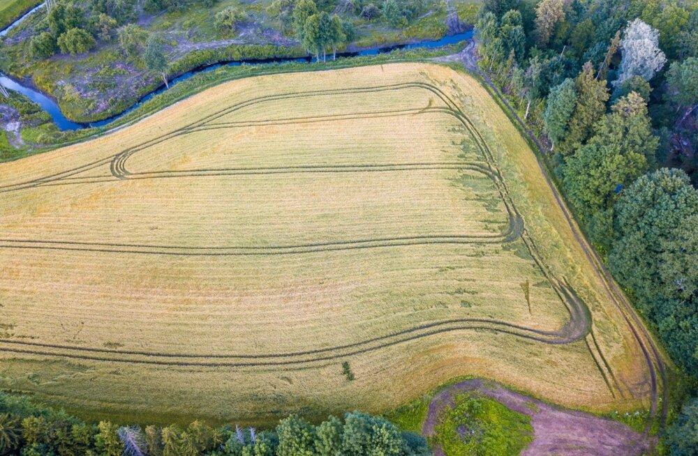 PRIA kontrollis mullu vähemalt 5% pindalatoetuste taotlejaist