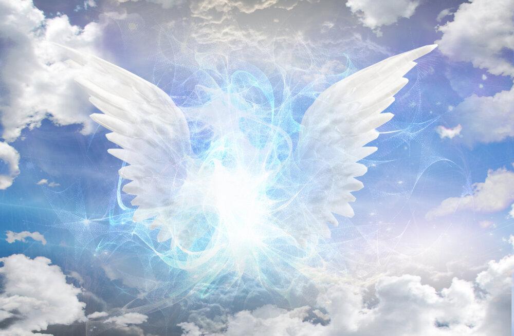 Taevased kaitsjad: sõnumid sinu inglitelt