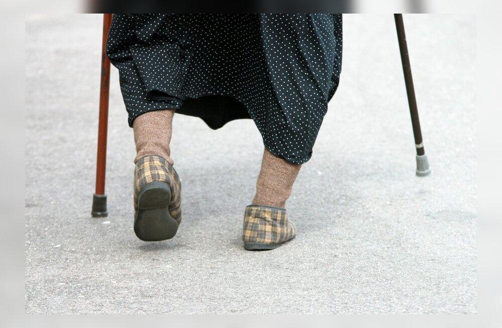 Lastefond toetab 78-aastast vanaema, kes kasvatab viit last