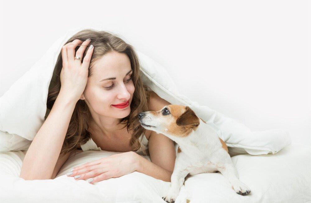 5 punkti, mis aitavad sul oma koerale nime valida