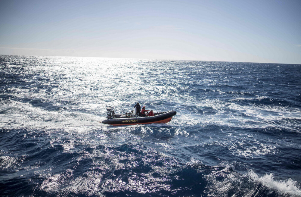 38 дней на шлюпке в океане всей семьей: что помогло выжить после кораблекрушения