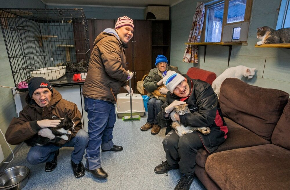 Tõrva kodu elanikud Vahur Kungla, Aino Aalde, Toivo Garten ja Rene Lassur käivad Valga loomade varjupaigas abiks.
