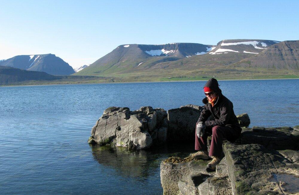 KATKEND REISIRAAMATUST: Minu Reykjavík. Kõik on kaasas
