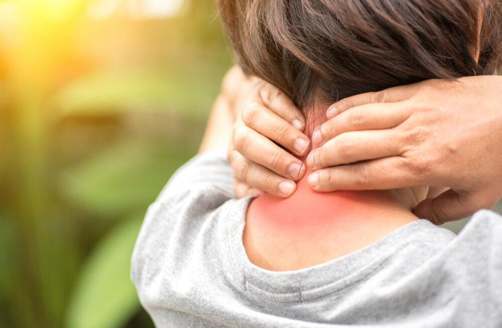 Südasuvine kuumus toob valu ja villid, aga ka nohu ning kõhulahtisuse. Miks?