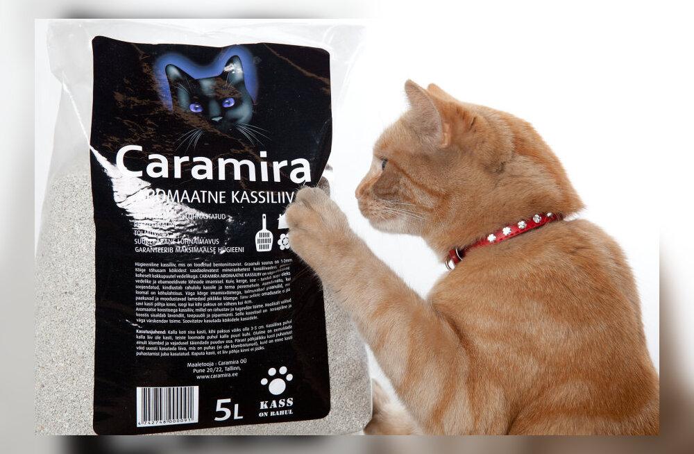 Kõrge kvaliteedi poolest hinnatud kassiliivad — mis need on ja kust need tulevad?