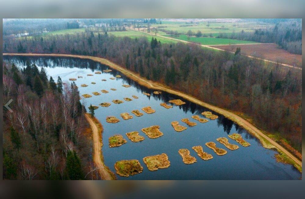 ФОТО   Невероятный пейзаж: уникальный пруд с островами неподалеку от границы Латвии и Литвы