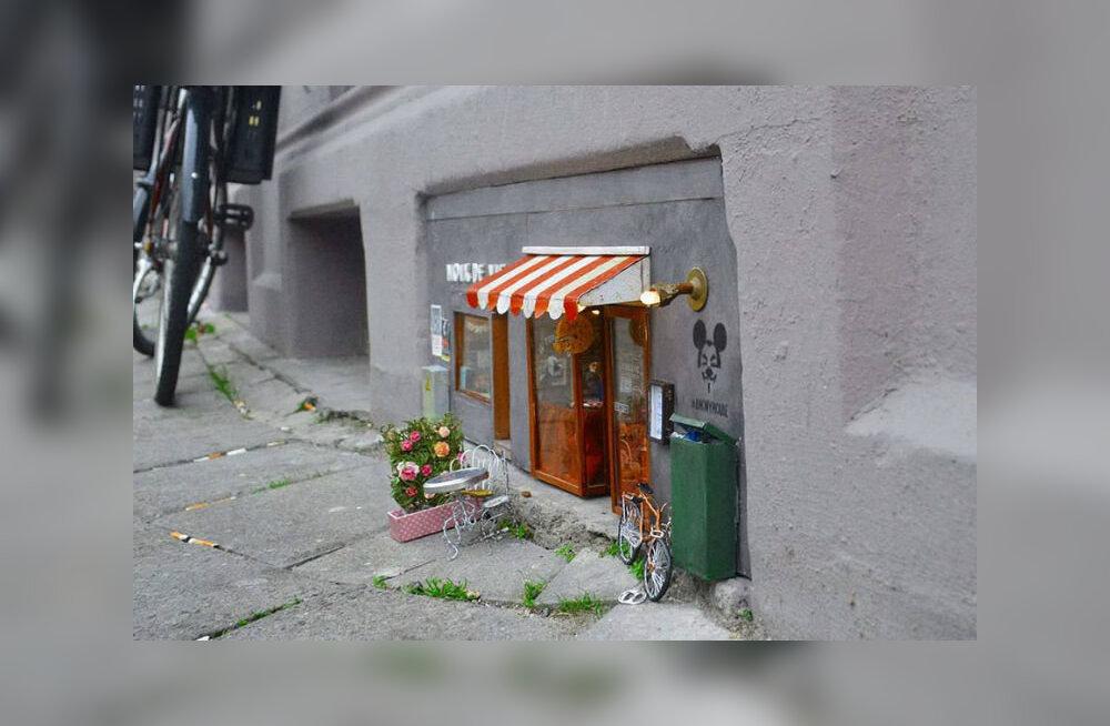 В Швеции открылся магазин для мышей