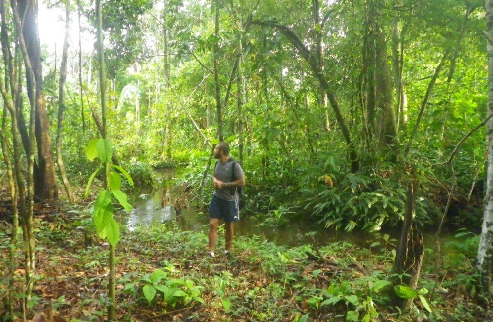 Дневник приключений. Часть третья: сила мысли в сердце Амазонских джунглей
