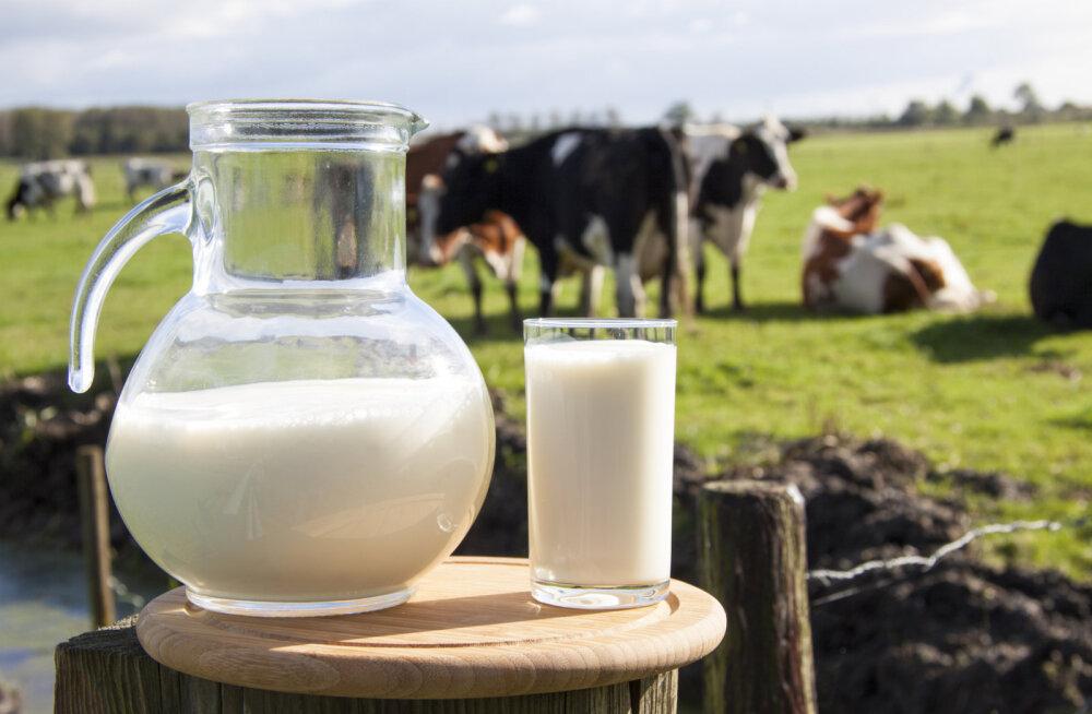 Piima seos luumurdudega: 10 paremat toitu luude tugevdamiseks