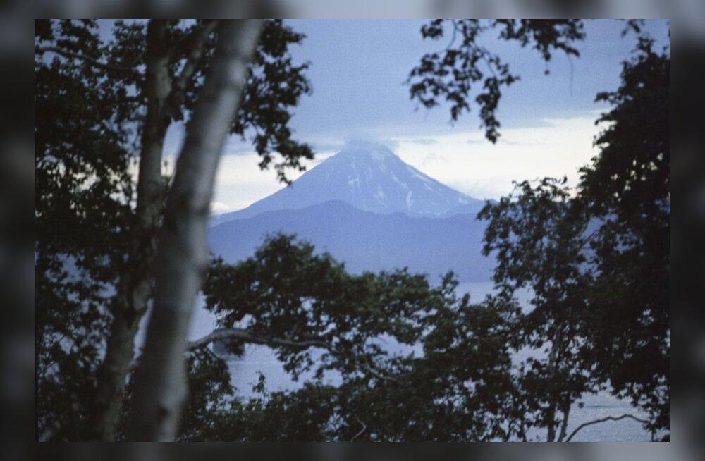 VIDEO: Kurikuulus vulkaan ärkas talveunest ja häirib lennuliiklust