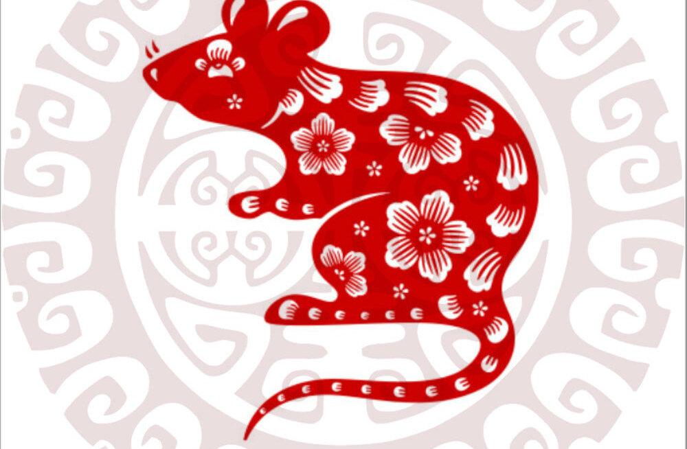 Mida näitab sinu looma-aasta märk? 12 fakti Roti aastal sündinud inimeste kohta