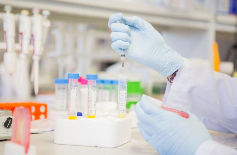 Labori-, infektsioonhaiguste ja perearstid seisavad oma ühisavalduses Pruunsilla-Reinsalu testiaktsioonile otsesõnu vastu.