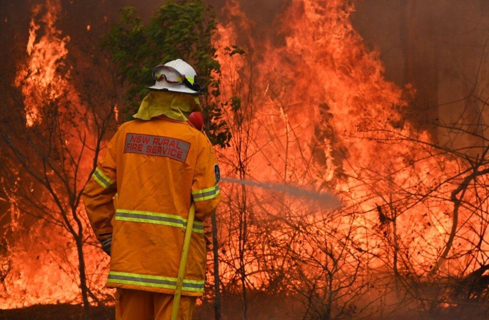 Austraalia ralli toimumispaigas käib võitlus maastikupõlengutega.
