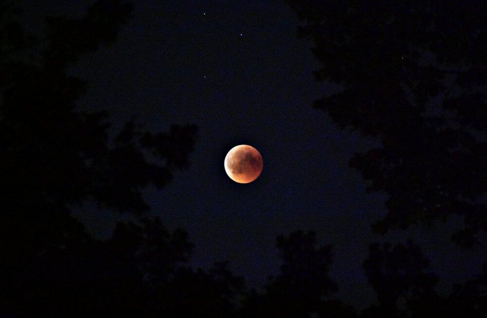 Полнолуние и лунное затмение 10.01: доступная магия от астрологов