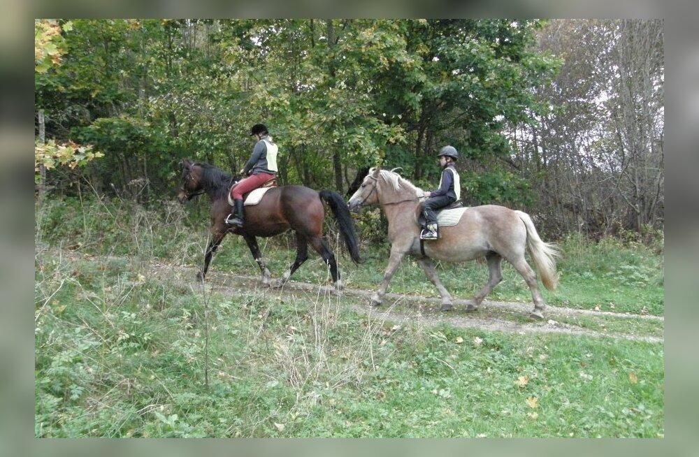 Suvi turismitaludes, 4. osa: ratsutades Lahemaa rahvusparki