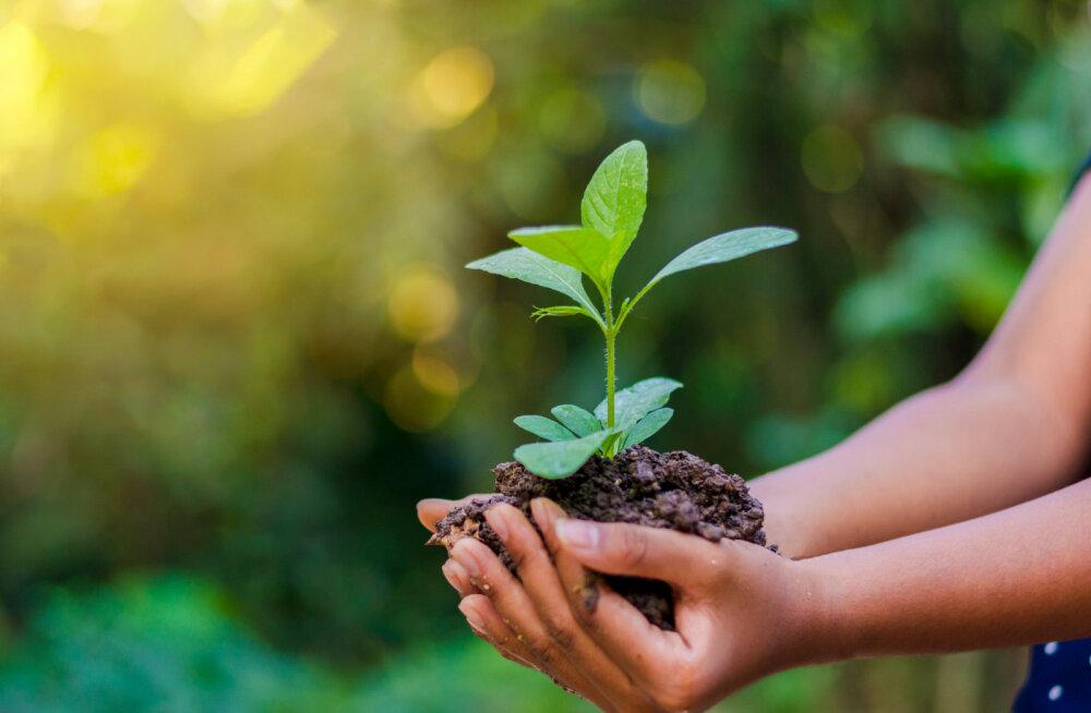 SISUKAS VAHEAEG   Vaata juba täna: Teeviit Live Kristin Siiliga – kas kriis on keskkonnale hästi mõjunud?